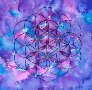flower of life paars